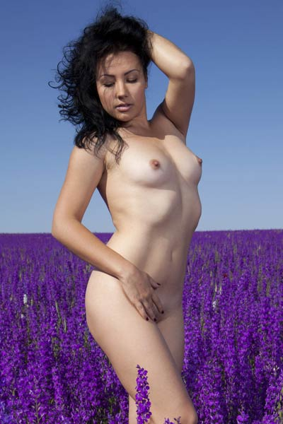 Model Maliko in Lavender Dreams